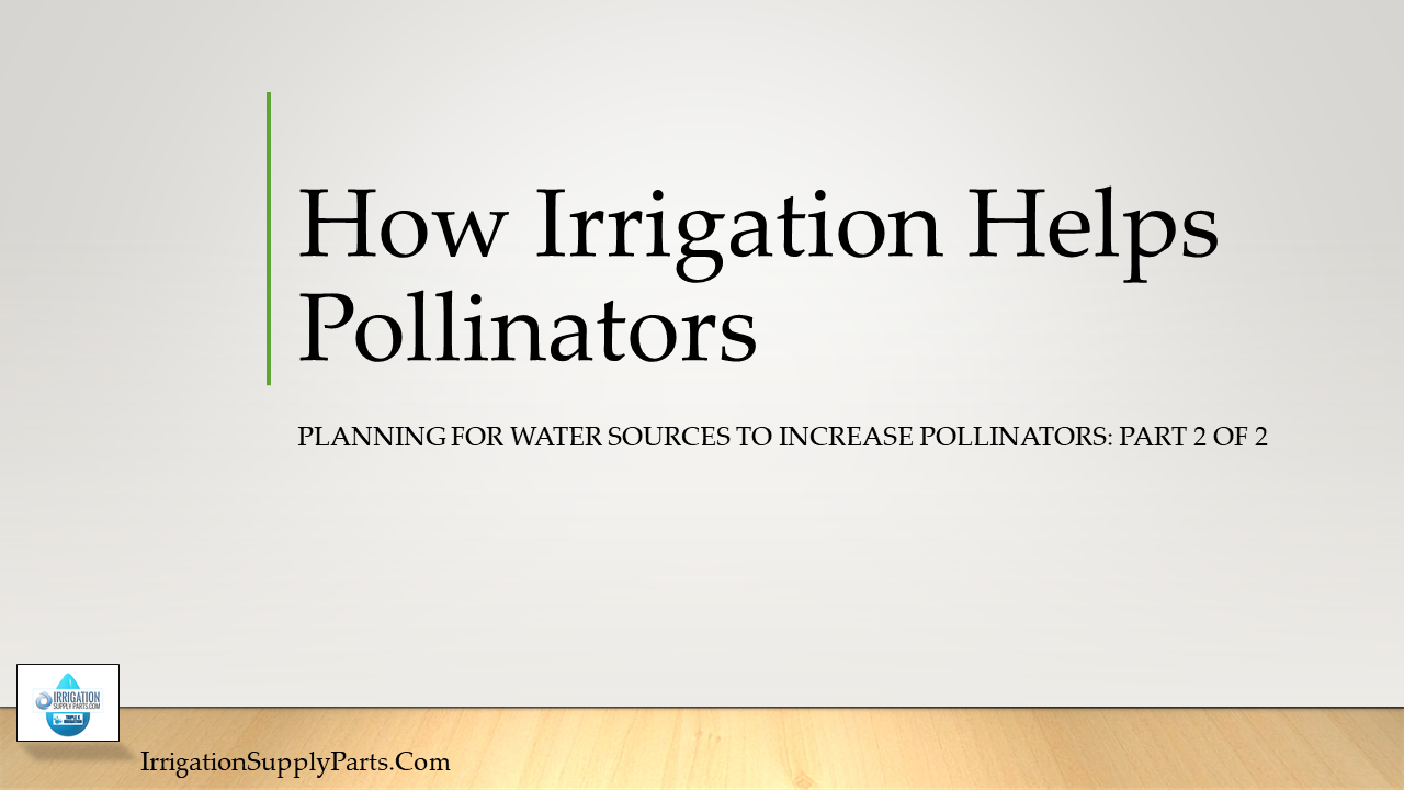 How Irrigation Helps Pollinators: Planning For Water Sources To Increase Pollinators Part 2 of 2