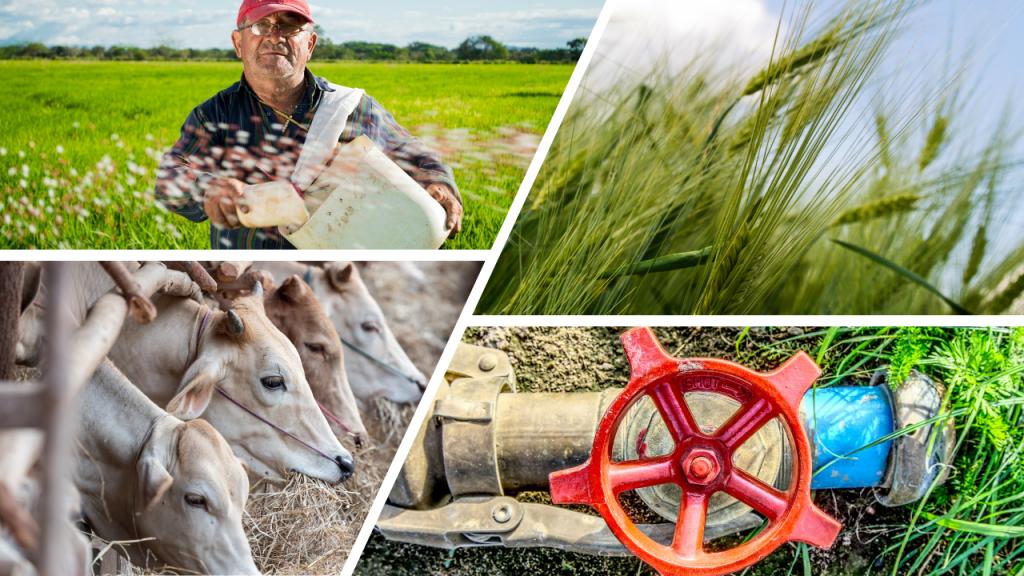 Irrigation Systems Supplier Online