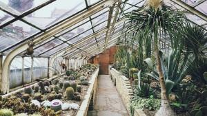 Pressure regulators for greenhouses